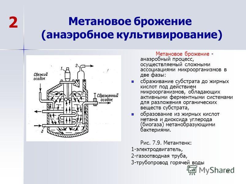 Метановое брожение (анаэробное культивирование) - анаэробный процесс, осуществляемый сложными ассоциациями микроорганизмов в две фазы: Метановое брожение - анаэробный процесс, осуществляемый сложными ассоциациями микроорганизмов в две фазы: сбраживан