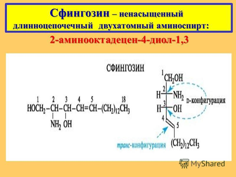 Сфингозин – ненасыщенный Сфингозин – ненасыщенный длинноцепочечный двухатомный аминоспирт: длинноцепочечный двухатомный аминоспирт: 2-аминооктадецен-4-диол-1,3
