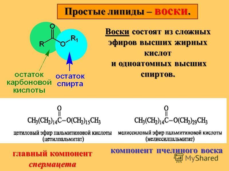 Простые липиды – воски. Воски состоят из сложных эфиров высших жирных кислот и одноатомных высших спиртов. и одноатомных высших спиртов. главный компонент спермацета компонент пчелиного воска