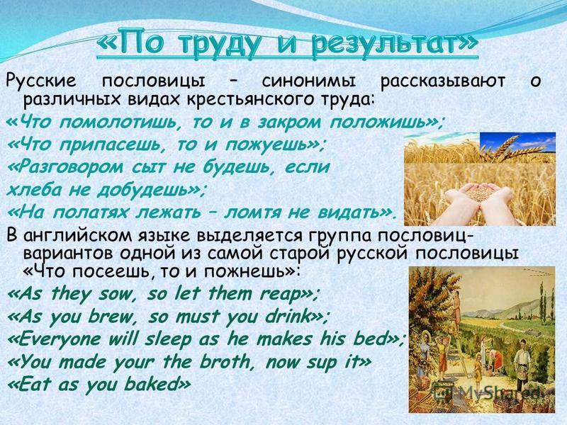 Русские пословицы – синонимы рассказывают о различных видах крестьянского труда: «Что помолотишь, то и в закром положишь»; «Что припасешь, то и пожуешь»; «Разговором сыт не будешь, если хлеба не добудешь»; «На полатях лежать – ломтя не видать». В анг