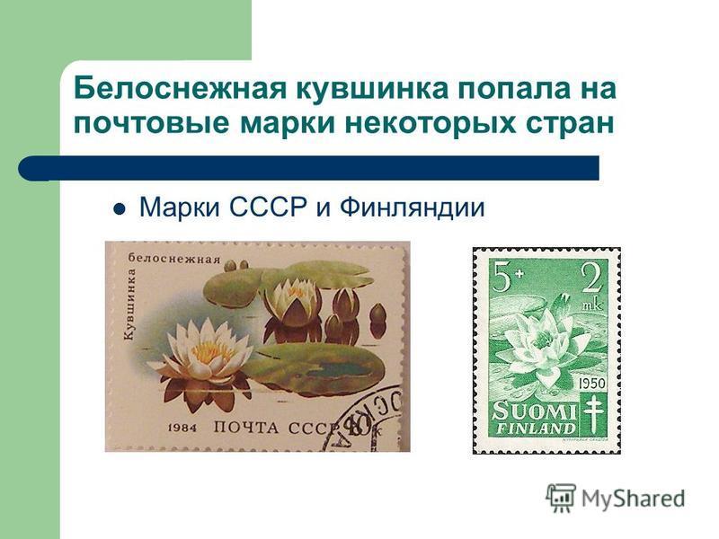 Белоснежная кувшинка попала на почтовые марки некоторых стран Марки СССР и Финляндии
