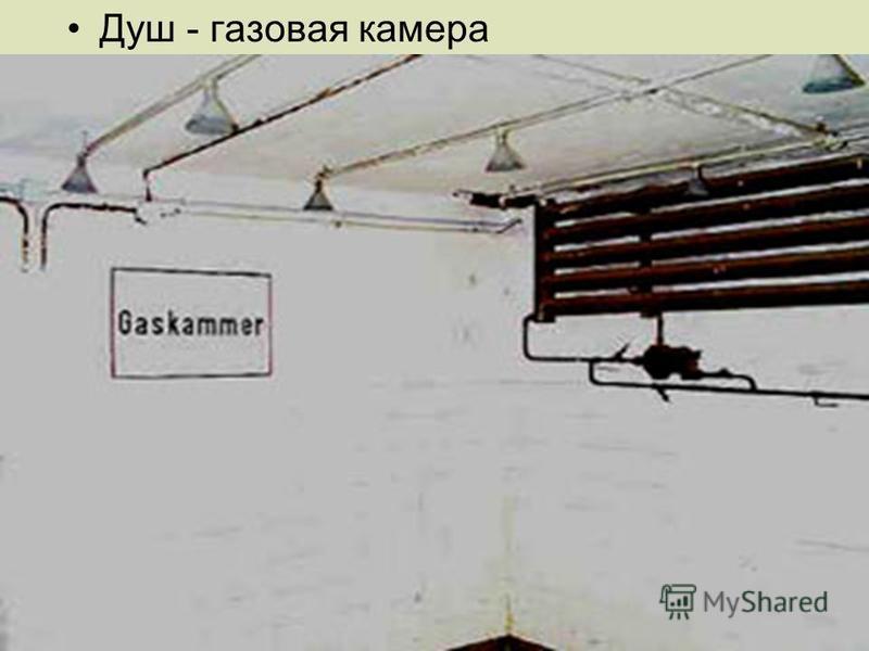 Душ - газовая камера