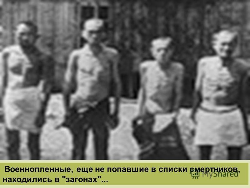 Военнопленные, еще не попавшие в списки смертников, находились в загонах...