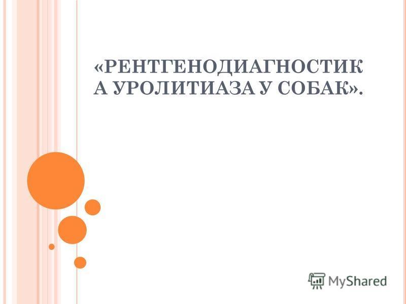 «РЕНТГЕНОДИАГНОСТИК А УРОЛИТИАЗА У СОБАК».