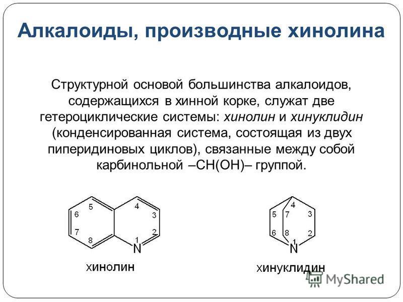 Алкалоиды, производные хинолина Структурной основой большинства алкалоидов, содержащихся в хинной корке, служат две гетероциклические системы: хинолин и хинуклидин (конденсированная система, состоящая из двух пиперидиновых циклов), связанные между со