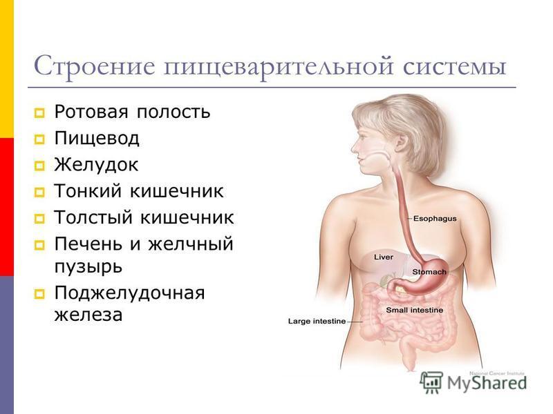 аллергия препараты 3 поколения