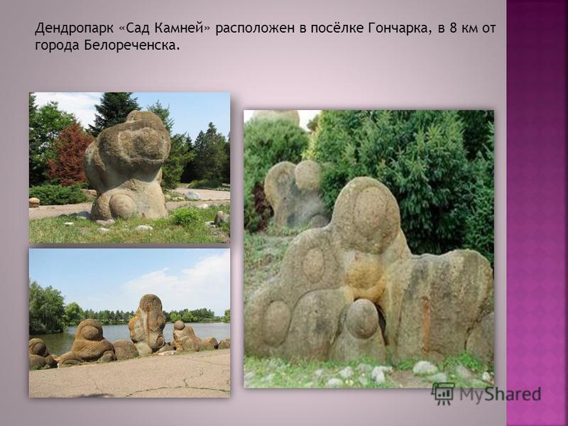 Дендропарк «Сад Камней» расположен в посёлке Гончарка, в 8 км от города Белореченска.