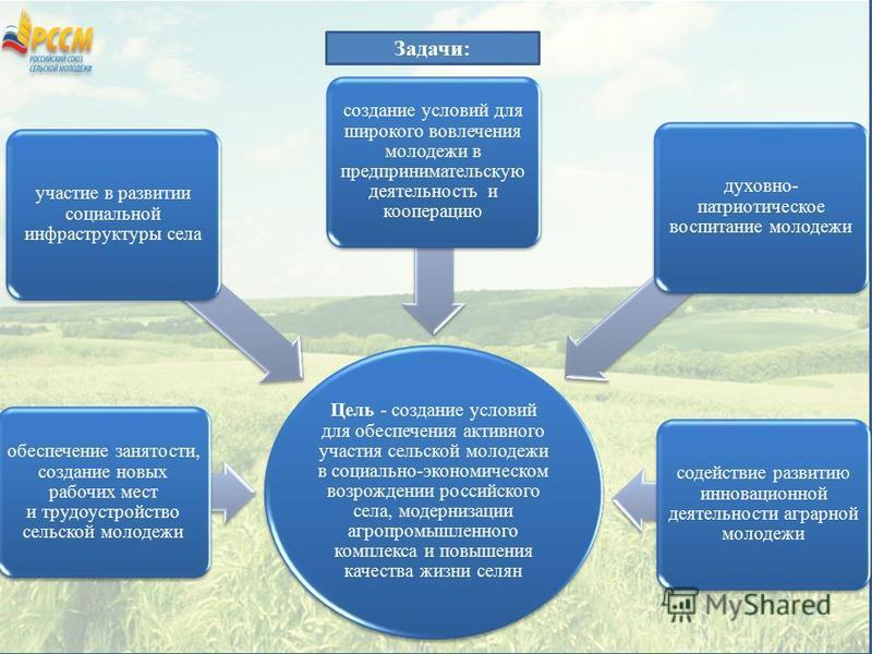 Цель - создание условий для обеспечения активного участия сельской молодежи в социально-экономическом возрождении российского села, модернизации агропромышленного комплекса и повышения качества жизни селян обеспечение занятости, создание новых рабочи