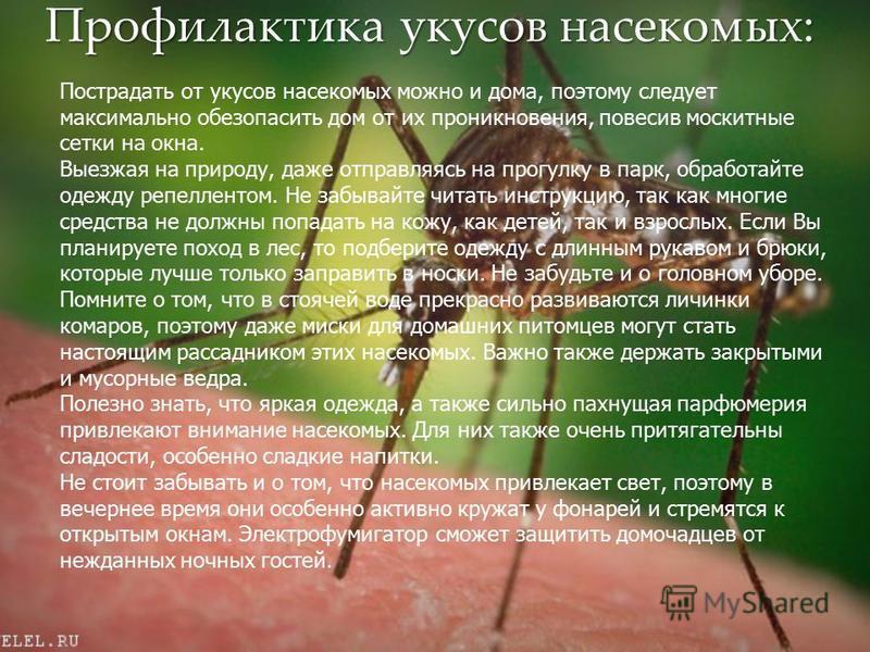 Профилактика укусов насекомых: Пострадать от укусов насекомых можно и дома, поэтому следует максимально обезопасить дом от их проникновения, повесив москитные сетки на окна. Выезжая на природу, даже отправляясь на прогулку в парк, обработайте одежду