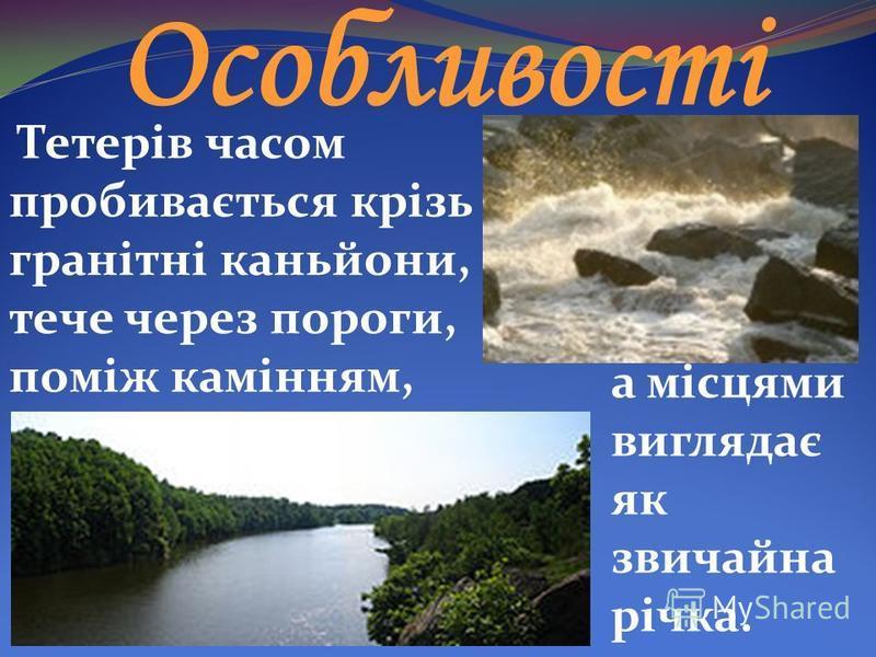 Особливості Тетерів часом пробивається крізь гранітні каньйони, тече через пороги, поміж камінням, а місцями виглядає як звичайна річка.