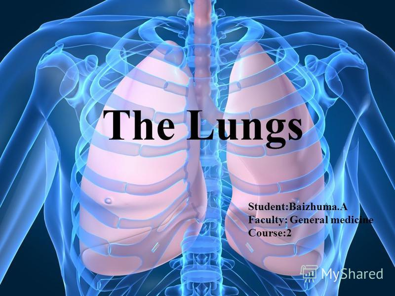 The Lungs Student:Baizhuma.A Faculty: General medicine Course:2