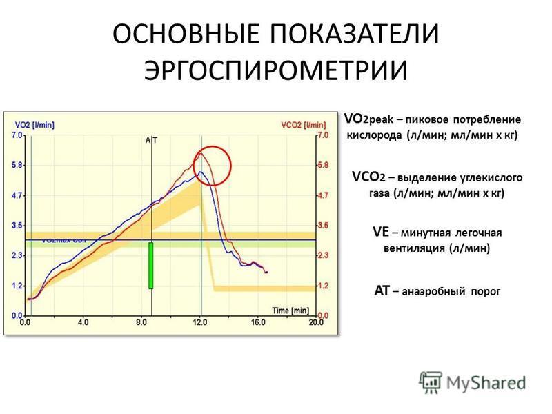 ОСНОВНЫЕ ПОКАЗАТЕЛИ ЭРГОСПИРОМЕТРИИ VO 2peak – пиковое потребление кислорода (л/мин; мл/мин х кг) VСO 2 – выделение углекислого газа (л/мин; мл/мин х кг) VE – минутная легочная вентиляция (л/мин) АТ – анаэробный порог
