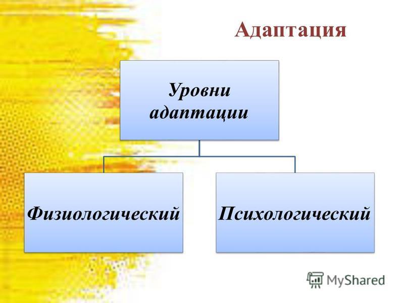 Адаптация Уровни адаптации Физиологический Психологический