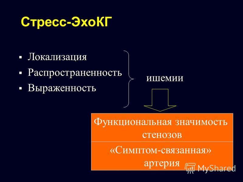 Стресс-ЭхоКГ Локализация Локализация Распространенность Распространенность Выраженность Выраженность ишемии Функциональная значимость стенозов «Симптом-связанная» артерия
