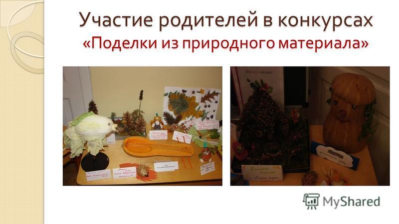 Участие родителей в конкурсах « Поделки из природного материала »