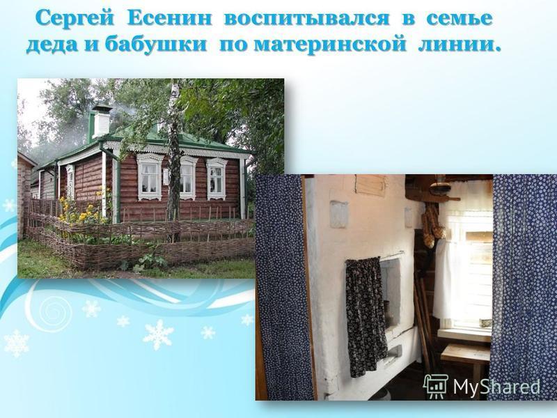Сергей Есенин воспитывался в семье деда и бабушки по материнской линии.
