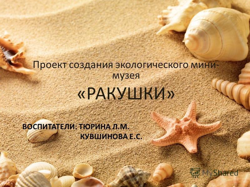 ВОСПИТАТЕЛИ: ТЮРИНА Л.М. КУВШИНОВА Е.С. Проект создания экологического мини- музея «РАКУШКИ»