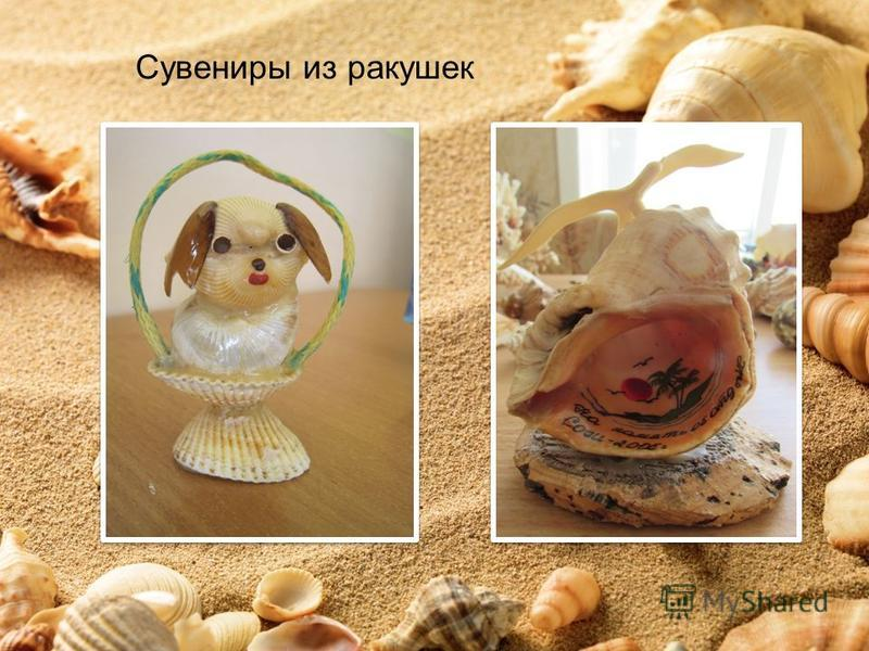 Сувениры из ракушек