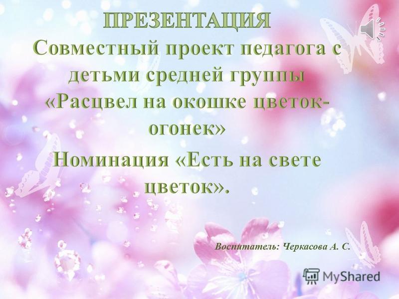 Воспитатель: Черкасова А. С.