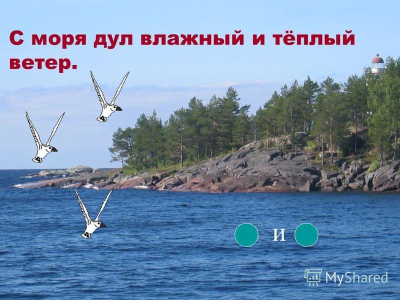 С моря дул влажный и тёплый ветер. и