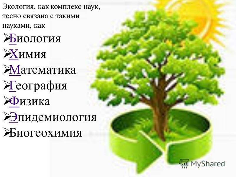 Как связана экология