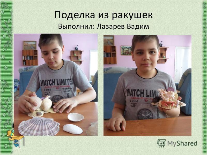Поделка из ракушек Выполнил: Лазарев Вадим