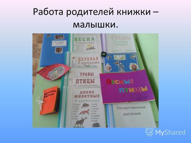 Работа родителей книжки – малышки.