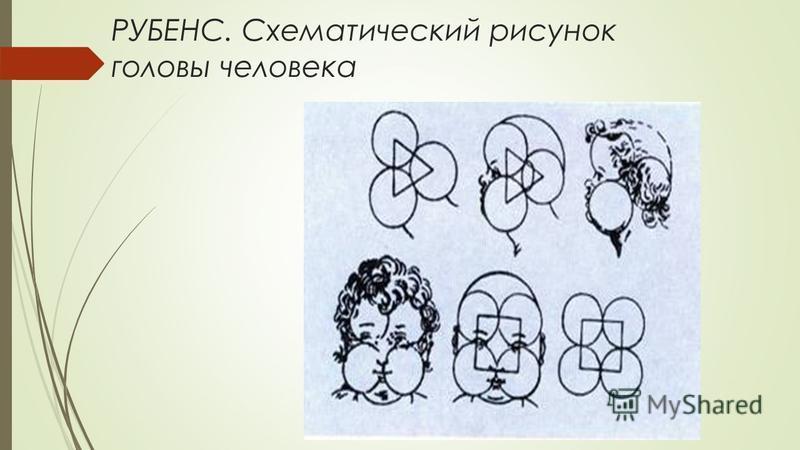 РУБЕНС. Схематический рисунок головы человека