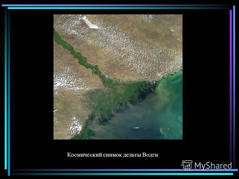 Космический снимок дельты Волги