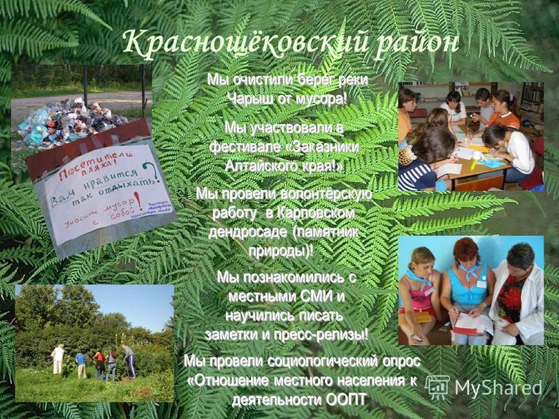 Краснощёковский район