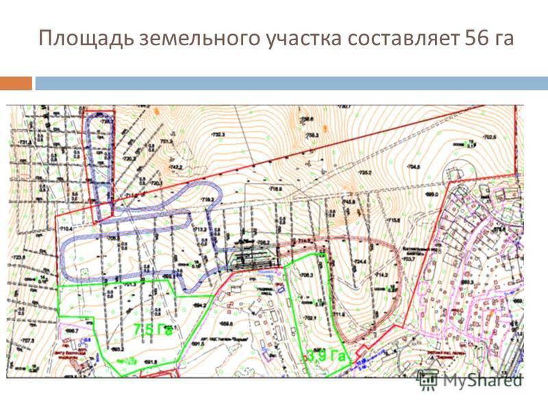 Площадь земельного участка составляет 56 га