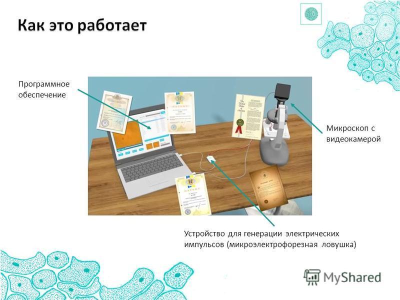 Программное обеспечение Микроскоп с видеокамерой Устройство для генерации электрических импульсов (микроэлектрофорезная ловушка)