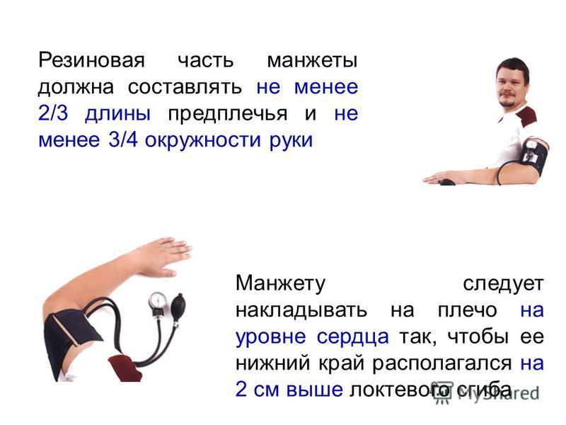 Манжету следует накладывать на плечо на уровне сердца так, чтобы ее нижний край располагался на 2 см выше локтевого сгиба Резиновая часть манжеты должна составлять не менее 2/3 длины предплечья и не менее 3/4 окружности руки
