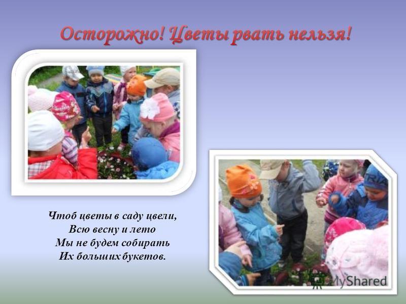 Чтоб цветы в саду цвели, Всю весну и лето Мы не будем собирать Их больших букетов.