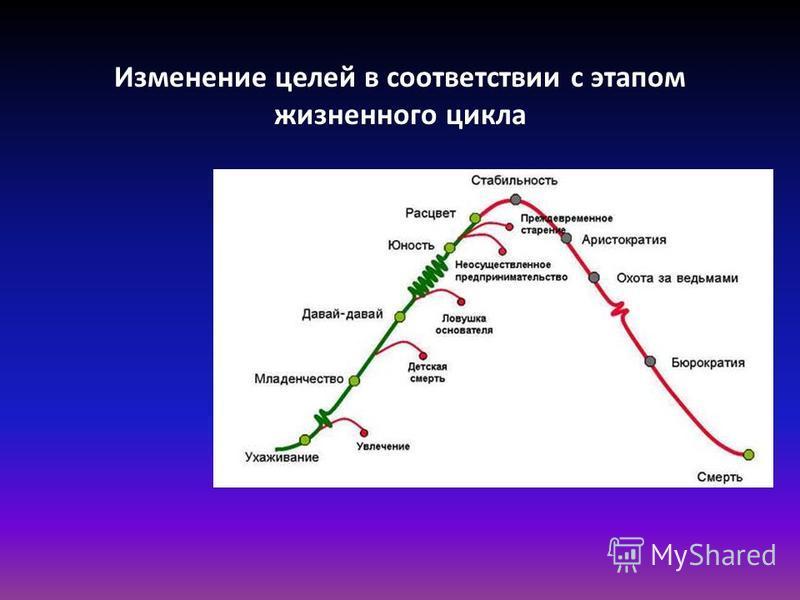 Изменение целей в соответствии с этапом жизненного цикла