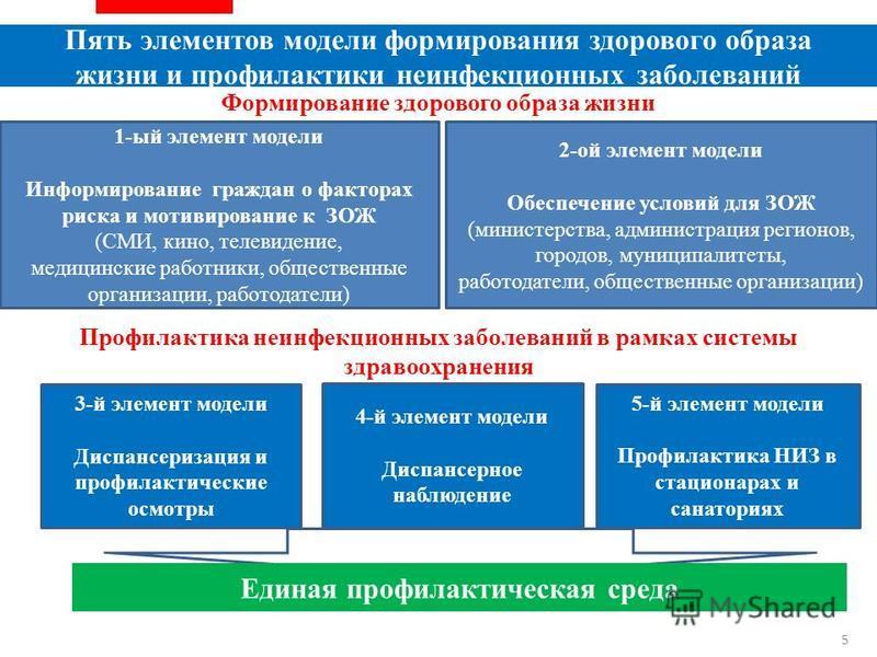 Формирование здорового образа жизни 1-ый элемент модели Информирование граждан о факторах риска и мотивирование к ЗОЖ (СМИ, кино, телевидение, медицинские работники, общественные организации, работодатели) 2-ой элемент модели Обеспечение условий для