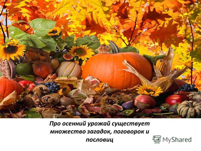 Пословицы Русские народные пословицы и поговорки для детей