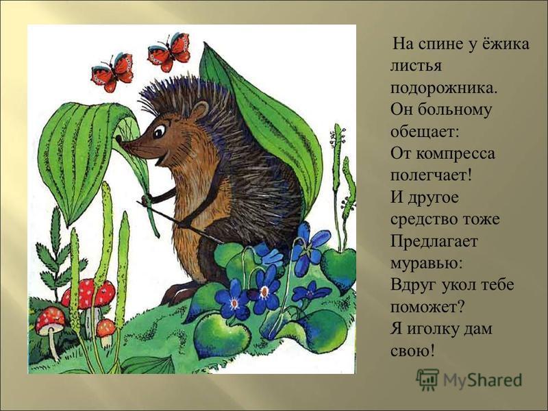 На спине у ёжика листья подорожника. Он больному обещает : От компресса полегчает ! И другое средство тоже Предлагает муравью : Вдруг укол тебе поможет ? Я иголку дам свою !