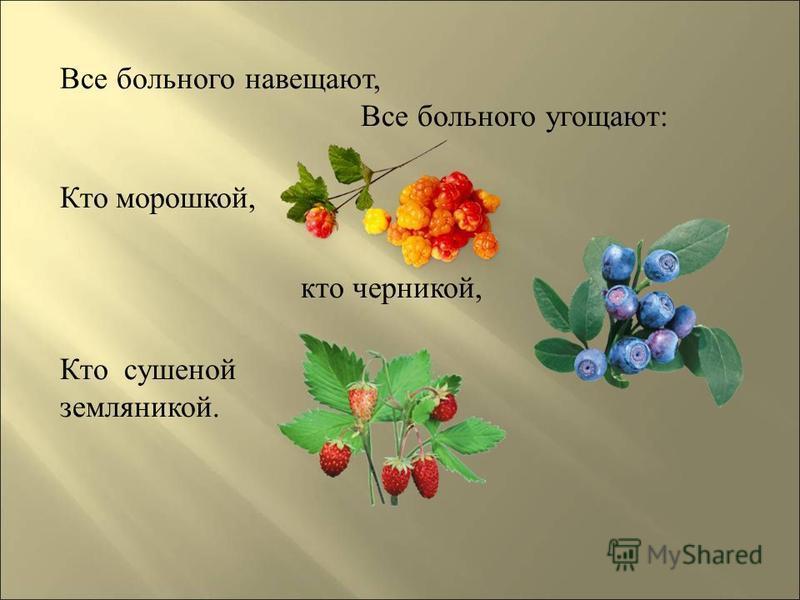 Все больного навещают, Все больного угощают: Кто морошкой, кто черникой, Кто сушеной земляникой.