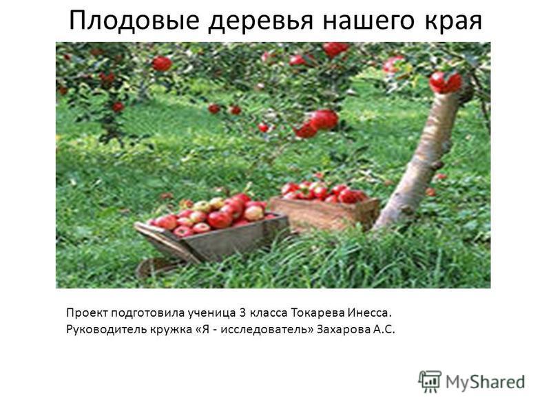 Плодовые деревья нашего края Проект подготовила ученица 3 класса Токарева Инесса. Руководитель кружка «Я - исследователь» Захарова А.С.