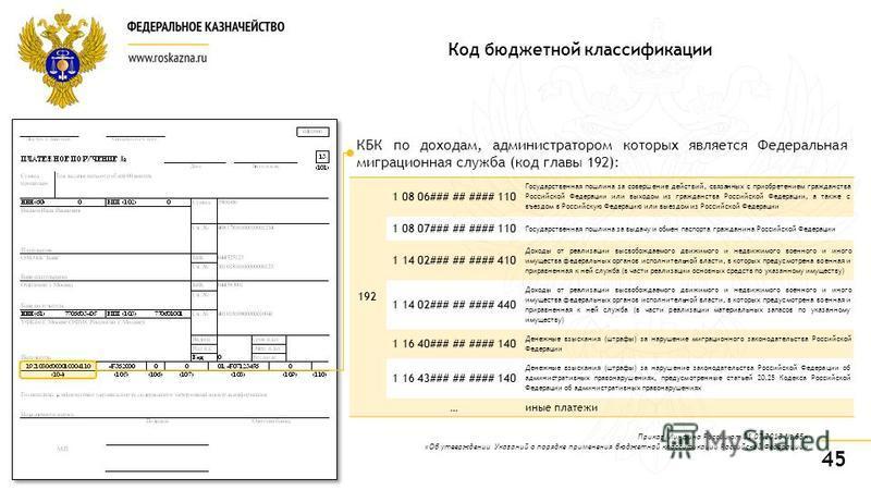 45 192 1 08 06### ## #### 110 Государственная пошлина за совершение действий, связанных с приобретением гражданства Российской Федерации или выходом из гражданства Российской Федерации, а также с въездом в Российскую Федерацию или выездом из Российск