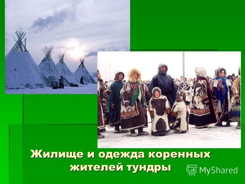 Жилище и одежда коренных жителей тундры