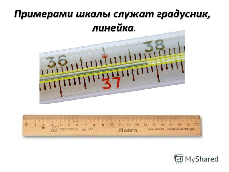 Примерами шкалы служат градусник, линейка.