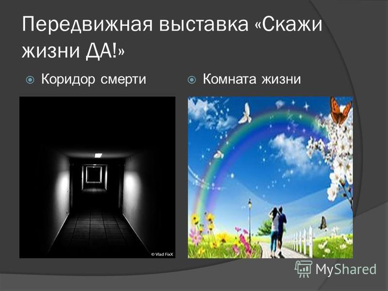 Передвижная выставка «Скажи жизни ДА!» Коридор смерти Комната жизни