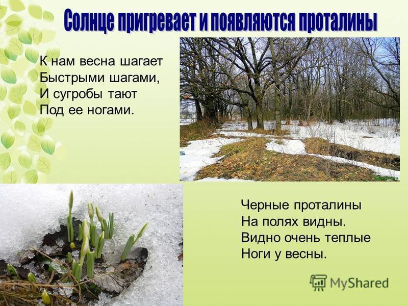 К нам весна шагает Быстрыми шагами, И сугробы тают Под ее ногами. Черные проталины На полях видны. Видно очень теплые Ноги у весны.