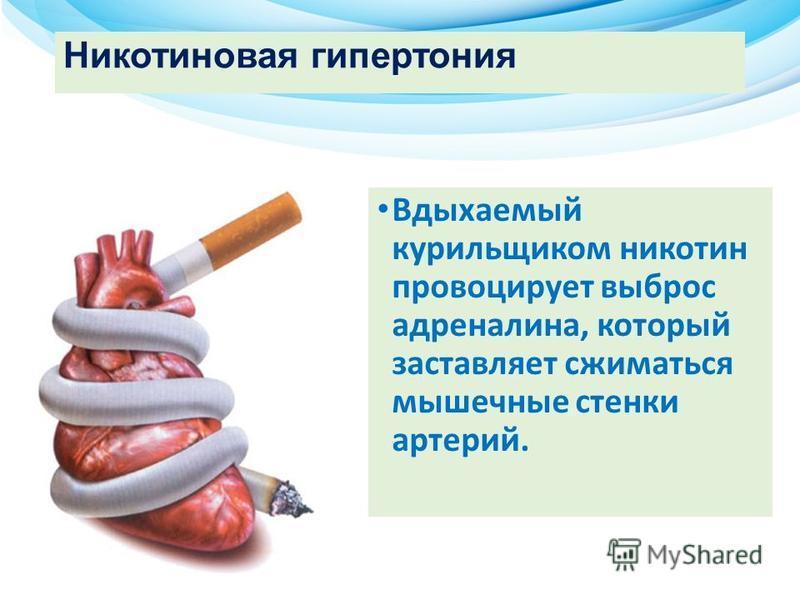 Никотиновая гипертония Вдыхаемый курильщиком никотин провоцирует выброс адреналина, который заставляет сжиматься мышечные стенки артерий.