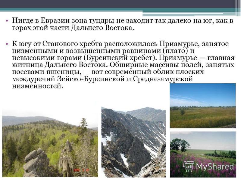 Нигде в Евразии зона тундры не заходит так далеко на юг, как в горах этой части Дальнего Востока. К югу от Станового хребта расположилось Приамурье, занятое низменными и возвышенными равнинами (плато) и невысокими горами (Буреинский хребет). Приамурь
