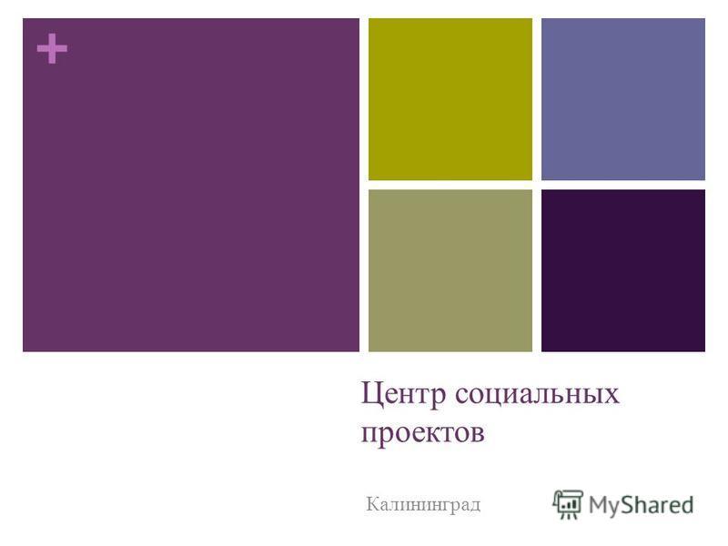 + Центр социальных проектов Калининград