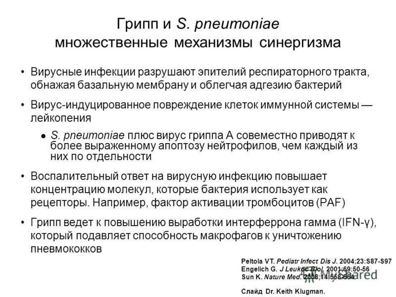 Peltola VT. Pediatr Infect Dis J. 2004;23:S87-S97 Engelich G. J Leukoc Biol. 2001;69:50-56 Sun K. Nature Med. 2008;14:558-564 Слайд Dr. Keith Klugman. Грипп и S. pneumoniae множественные механизмы синергизма Вирусные инфекции разрушают эпителий респи