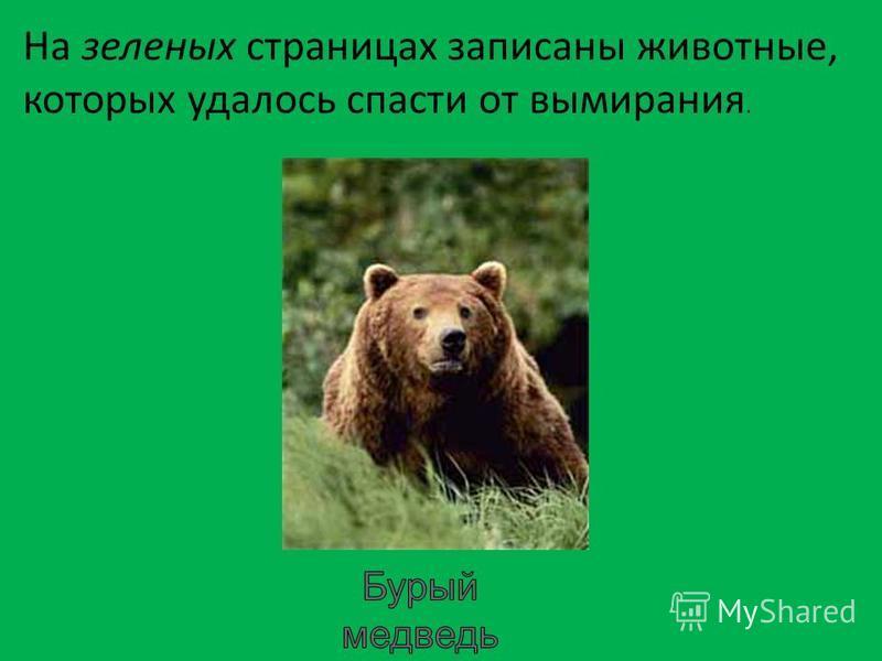 На зеленых страницах записаны животные, которых удалось спасти от вымирания.
